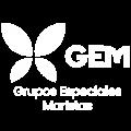 Logo_GEM_WEB copia